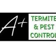 A Termite Pest Control Mooresville Nc