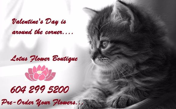 Valentines Day At Lotus Flower Boutiquebrentwood Florists By Lotus