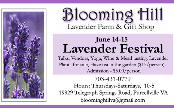 5th Annual Blooming Hill Lavender Festival by Blooming Hill Lavender