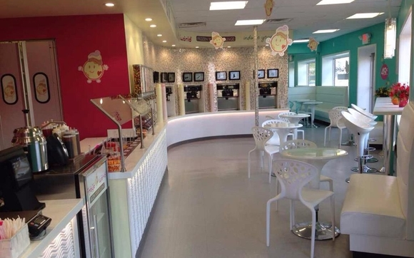 Froyo Auction By Restaurant Equipment Paradise In East