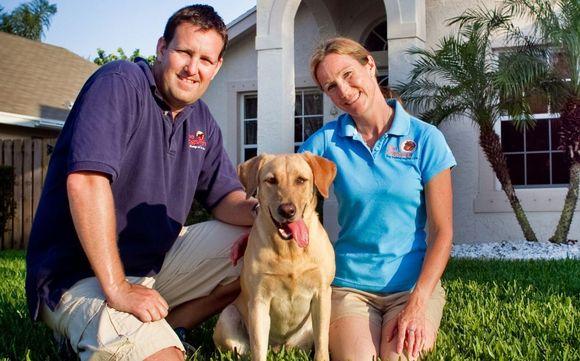 Board & Train, Dog Training by The DogSmith Palm Beach in