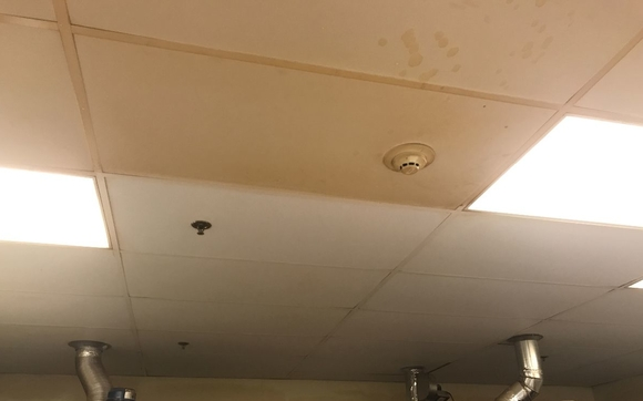 Super Acoustic Vinyl Ceiling Cleaning By Crosslight Services Llc Download Free Architecture Designs Meptaeticmadebymaigaardcom