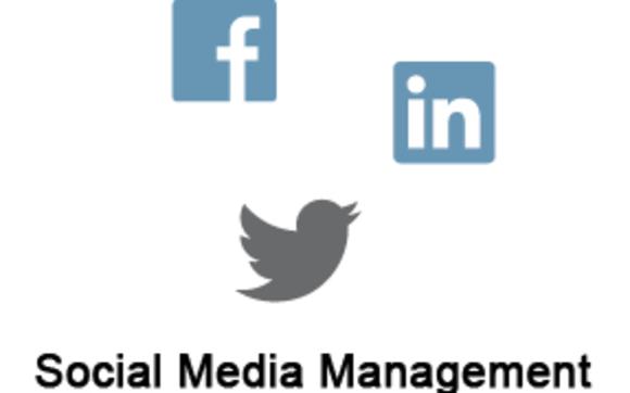 social media monitoring brand reputation online
