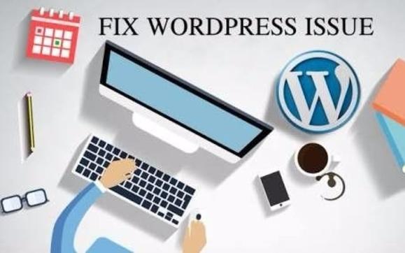 Need A WordPress Fix? Chat W/ WordPress Expert by Influx