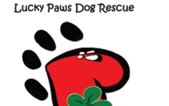 Adoption Event's, Puppy Kissing Booth, Fundraising by Lucky
