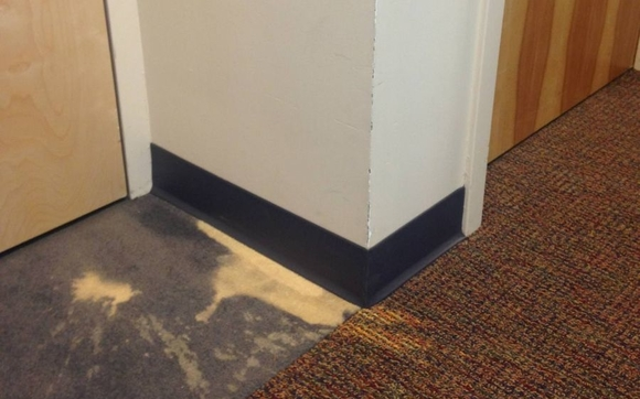 This is a very common problem from household bleach or other chemicals being spilled on carpet which results in unsightly faded spots.