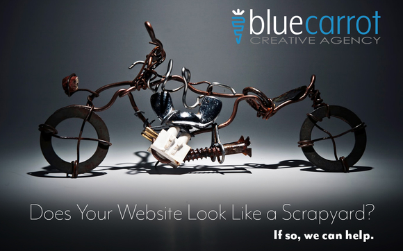 Web Design and Website Maintenance by Blue Carrot Creative